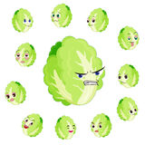 Chinese cabbage cartoon with many expressions. Isolated on white background Stock Image