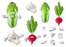 Chinese cabbage, garlic and radish vegetables Royalty Free Stock Photos