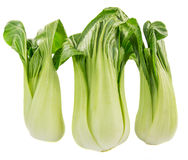 Chinese Cabbage II Royalty Free Stock Images