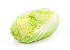 Chinese cabbage isolated Royalty Free Stock Image