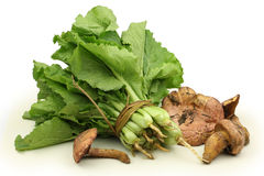 Chinese cabbage and mushrooms Stock Image