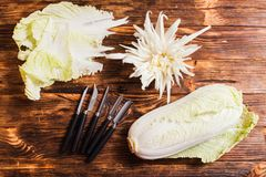 Chinese cabbage carving, top view on the table stock photo