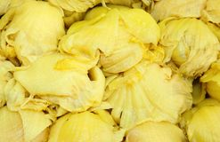 Chinese cabbage pickled Royalty Free Stock Photography