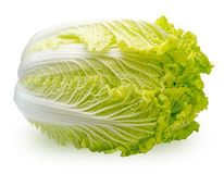Chinese cabbage Stock Photos