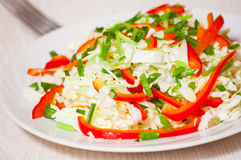 Chinese cabbage salad with red bell pepper Royalty Free Stock Images