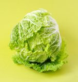 Chinese cabbage or salad Romano. Loaf of chinese cabbage or salad Romano Royalty Free Stock Photo