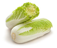 Chinese cabbage Royalty Free Stock Photo