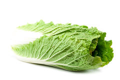 Chinese cabbage on a white background. Royalty Free Stock Photography
