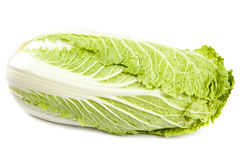 Chinese cabbage on a white background. Royalty Free Stock Image