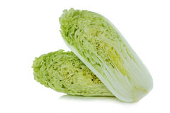 Chinese cabbage on white background. Chinese cabbage isolated on the white background to food is good for your health Royalty Free Stock Image