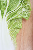 Chinese cabbage on wooden chopping board Royalty Free Stock Photos