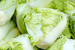 Chinese cabbages Royalty Free Stock Image