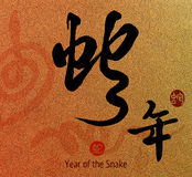 Chinese Calligraphy 2013 Royalty Free Stock Images