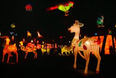Chinese cartoon character lanterns. Traditional Chinese lanterns light up to celebrate the festival. This is taken in Jiangyou park, Sichuan, China. Magpie, deer Royalty Free Stock Photos