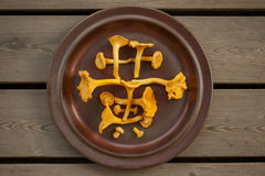 Chinese character made of chanterelle. Chinese character  Huang - yellow, made of chanterelle mushrooms Stock Images