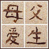 Chinese character for mother, father, love, birth Royalty Free Stock Photo