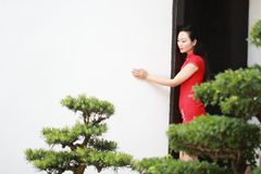 Chinese cheongsam model stand next to bonsai Royalty Free Stock Image