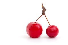 Chinese cherry apples Royalty Free Stock Photography