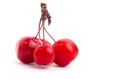 Chinese cherry apples Stock Photo