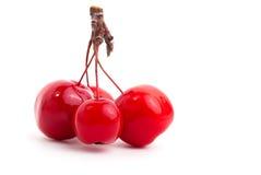 Chinese Cherry Apples