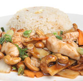 Chinese Chicken with Cashew Nuts Royalty Free Stock Photography