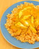 Chinese chicken Curry Royalty Free Stock Image