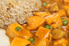 Chinese Chicken Curry Takeaway Royalty Free Stock Photo