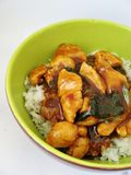 Chinese chicken with rice. Stir fry chicken with scallions and served on plain rice Royalty Free Stock Image