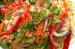 Chinese Chicken Salad. Plate of Chinese chicken salad served at an outdoor restaurant Stock Photo