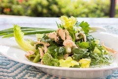 Chinese chicken salad. Made with shredded chicken and mixed greens with dressing royalty free stock photo