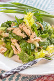 Chinese chicken salad. Made with shredded chicken and mixed greens with dressing stock photos