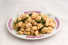 Chinese Chicken and Scallion Stir-Fry Royalty Free Stock Photos