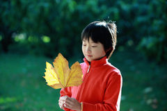 Chinese child stock images