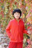 Chinese child. The chinese child in the autumn stock photos