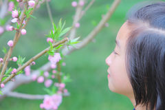 Chinese child with spring flowers Royalty Free Stock Images