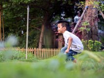 Chinese Child (boy) Crouch on The Park Stock Images