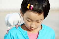 Chinese child with pigeon Royalty Free Stock Images