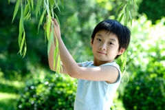 Chinese children royalty free stock image