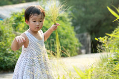 Chinese children playing. Royalty Free Stock Image