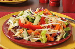 Chinese chop salad Stock Images