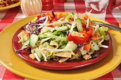 Chinese Chop Salad. Chinese salad with red peppers, crispy won ton strips, lettuce, carrots and more Royalty Free Stock Photo