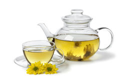 Chinese Chrysanthemum tea Stock Image