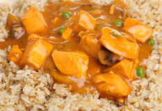 Chinese Ckicken Curry & Rice Stock Photography