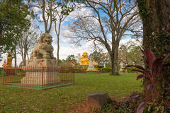 Free Chinese Classical Buddah And Stone Lions In A Temple Stock Images - 76765514