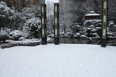 The garden and the snow