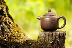 Chinese clay teapot on old wooden stump with moss on bright gree Royalty Free Stock Image