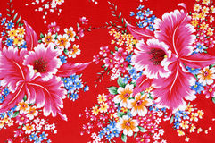Chinese cloths Stock Photography