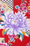 Chinese cloths Royalty Free Stock Images