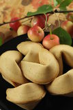 Chinese cookies Stock Image