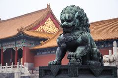 Chinese copper lion Stock Photos